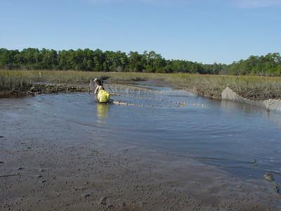 Winyah Bay 2002